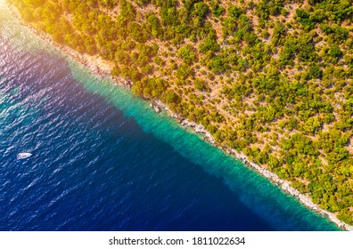Coastal area with blue clear water and forest on land, aerial view taken by drone. Half land half sea on a diagonal line. A picturesque place where transparent turquoise water meets a stony shore.