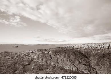 Coastal Beach off Holy Island; England; UK in Black and White Sepia Tone