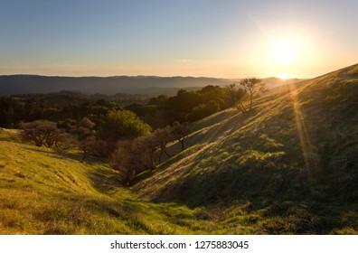 Coastal California Hillsides at Sunset in Spring (Russian Ridge Open Space)
