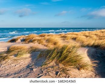 Coastal Dunes, Stormy Baltic Sea, Darss Peninsula, Germany