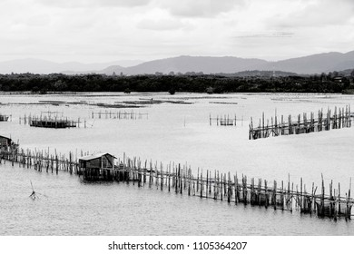 The coastal fisheries in Chanthaburi province, Thailand, photogr