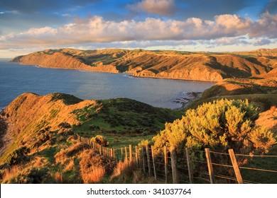 coastal green hills landscape, location - Wellington, Makara walk, North Island, New Zealand