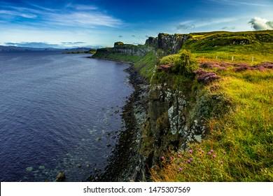 Coastal Landscape With Heather Near Kilt Rock On The Isle Of Skye In Scotland