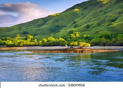 Coastal landscape of island Komodo National Park, UNESCO World Heritage Site, Indonesia, Southeast Asia