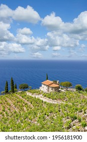 Küstenlandschaft auf der Insel Elba, Toskana, Mittelmeer, Italien