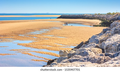 Coastal landscape - view of the Atlantic coast at low tide near the town of La Palmyre, the Nouvelle-Aquitaine region, in the south-west of France