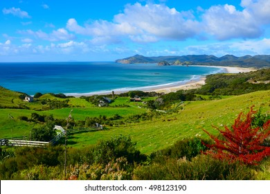 Coastal Path and beach in Great Barrier Island, New Zealand