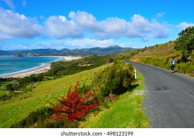 Coastal Path in Great Barrier Island, New Zealand