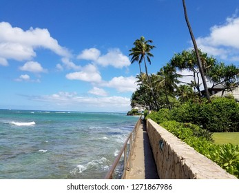 Coastal Path to Makalei Beach with waves lapping, napakaa, lava rock wall and Coconut trees on a wonderful day in Oahu, Hawaii.