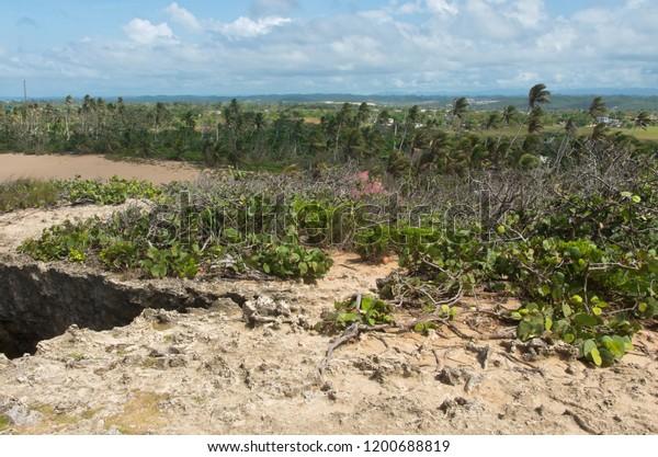 coastal plains and rugged landscape of punta las tunas at cueva del indio on puerto rico's north coast