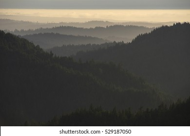 Coastal Range of Northern California at sunset, Mendocino County; looking west near town of Willits.