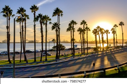 Coastal road sunset in Long Beach, California.