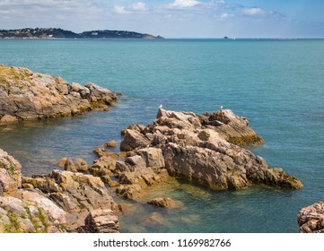 Coastal rocks in Torbay, England