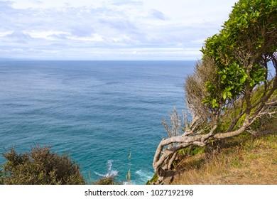 Coastal scene near Nugget Point and Waipapa Point Lighthouse, New Zealand