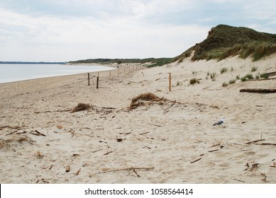 Coastal scene on Amrum, Germany. Amrum is one of the North Frisian Islands on the German North Sea coast, south of Sylt and west of Foehr