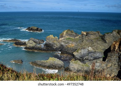 coastal shapes