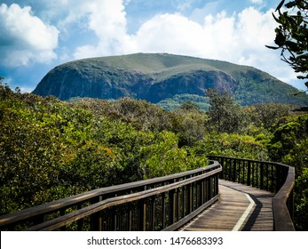 The coastal walking and biking pathway on the Sunshine Coast boardwalk, at Mount Coolum, Queensland, Australia