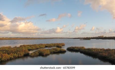 Coastal wetlands in Bolsa Chica, Huntington Beach, CA
