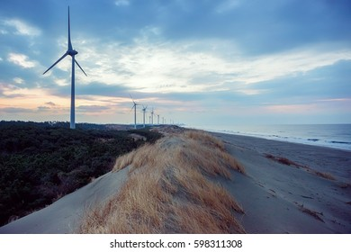Coastal wind power generation, early morning landscape.