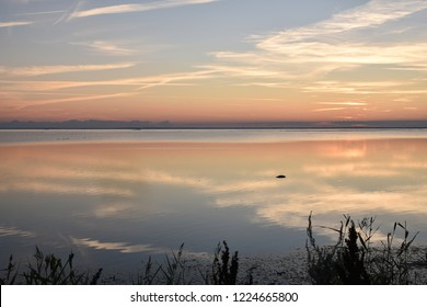Coastline with calm water by sunset at the swedish island Oland in the Baltic Sea