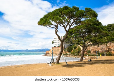 Coastline Costa Dorada, Salou, Spain. Beautiful sea and palms on a beach