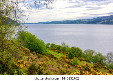 The coastline of the Loch Ness River in Scotland.