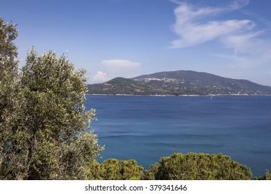 Coastline near Lacona village, island of Elba, Tuscany, Italy, Europe