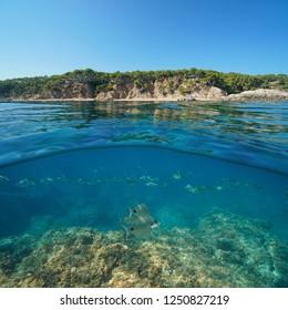 Coastline near Palamos in Spain and a school of fish with rock underwater, split view half above and below water surface, Cala Bona, Costa Brava, Mediterranean sea