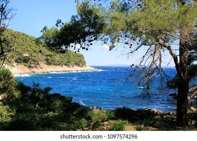 coastline on the island Losinj, Croatia