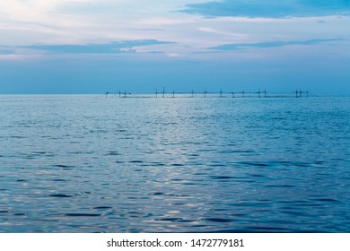 Coastline of the sea in the rays of the setting sun