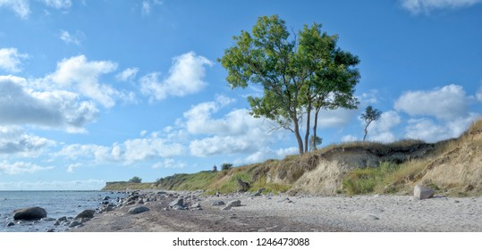 Coastline at Staberhuk on Fehmarn,baltic Sea,Schleswig-Holstein,Germany