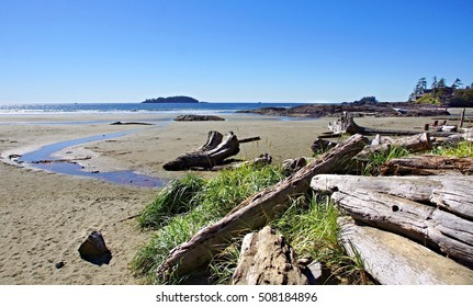 Coastline at Tofino with large driftwood on the beach , Vancouver Island, Canada .