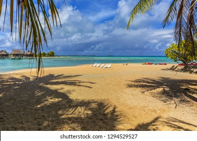 Coastline with a tropical beach and the turquoise water of the inner lagoon of the atoll of Tikehau at sunny day. Tuamotus archipelago, French Polynesia, south Pacific ocean.