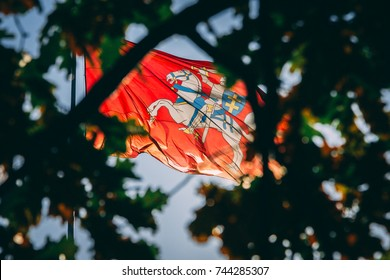 The coat of arms of Lithuania. Knight on a horse on a red background behind the leaves of trees.