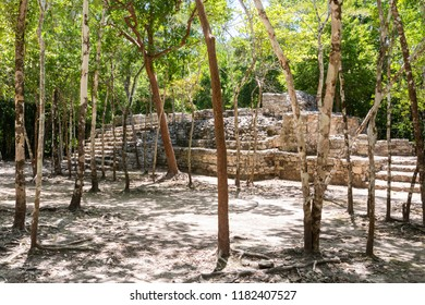 Coba, Mexico, 10-June-2018. Coba is an ancient Mayan city on the Yucatan Peninsula, located in the Mexican state of Quintana Roo