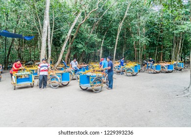 COBA, MEXICO - MARCH 1, 2016: Pedi-trikes (bicycle taxi) riders wait for tourists at the ruins of the Mayan city Coba, Mexico