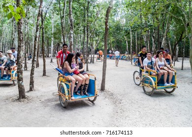 COBA, MEXICO - MARCH 1, 2016: Pedi-trikes (bicycle taxi) with tourists at the ruins of the Mayan city Coba, Mexico
