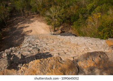 Coba, Mexico, Yucatan: Coba, Mexico, Yucatan: top view of the jungle and the steps of the great pyramid Coba Nohoch Mul