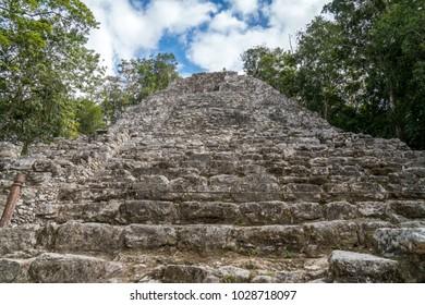 Coba Pyramid Nohoch Mul Pyramid Coba, Yucatan Mexico