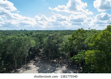 Coba/Mexico: 11 06 2018: view from the top of the ruins of Coba in Mexico