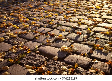cobble stone pavement with autumn leaves