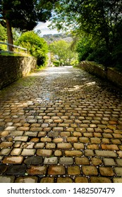 A cobble stoned tree lined downhill path in a yorkshire village