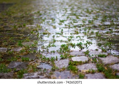 Cobble tiled path with large puddles abstract