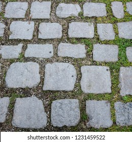 Cobbled Path - a path paved with stone cobbles.
