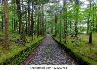 Cobbled pathway often known as 'Happy Valley', Karuizawa, Nagano, Japan