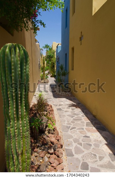 A cobbled-stone sidewalk meanders through colorful adobe condominiums in Loreto, Mexico  on the Sea of Cortez.