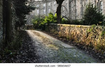 Cobblestone alley in Edinburgh