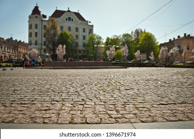 Cobblestone close-up. Sharpness on granite tile. Square and street are blurred in the background. Layout for design. The area is removed from the lower angle.