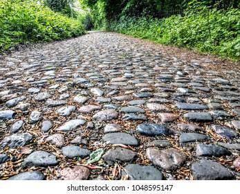 a cobblestone path way
