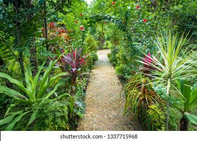 Cobblestone pathway in lush tropical garden - El Nido, Palawan - Philippines
